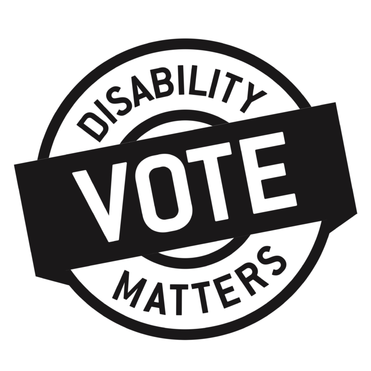 Disability Matters Vote graphic